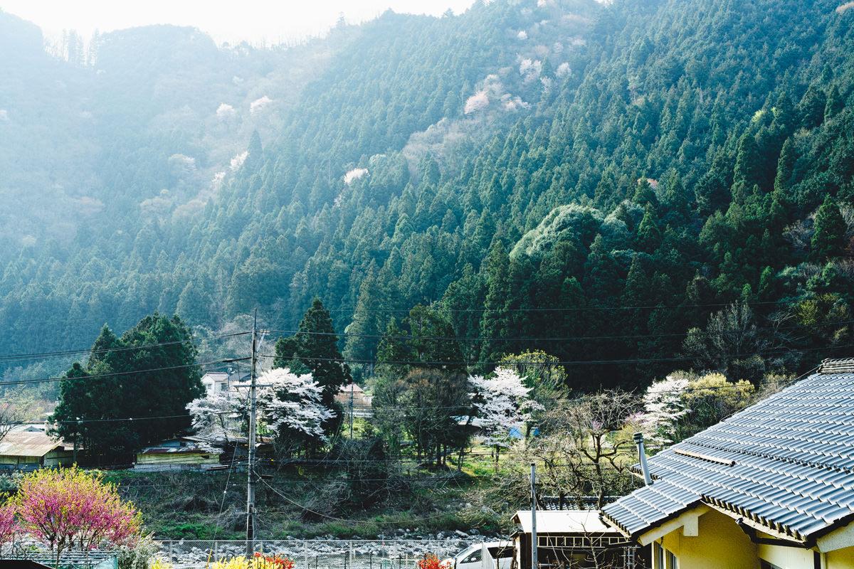 安野から見える風景