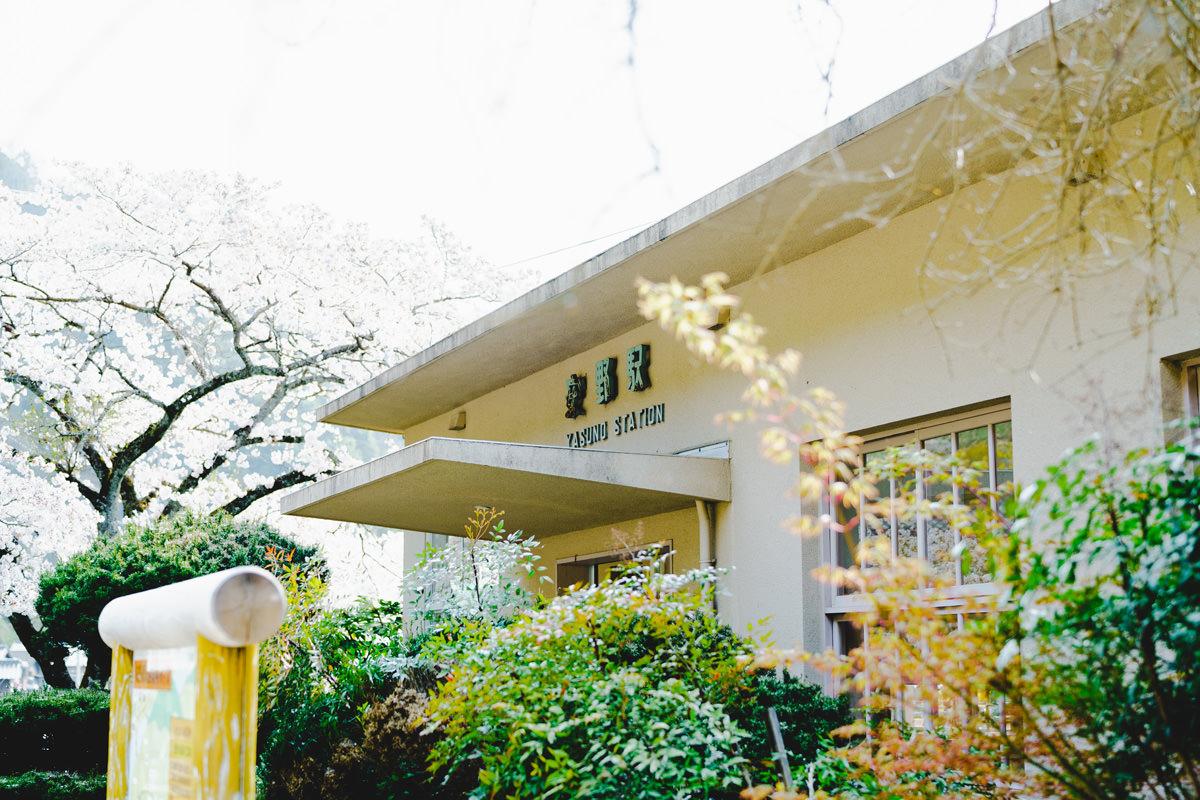 桜と安野駅