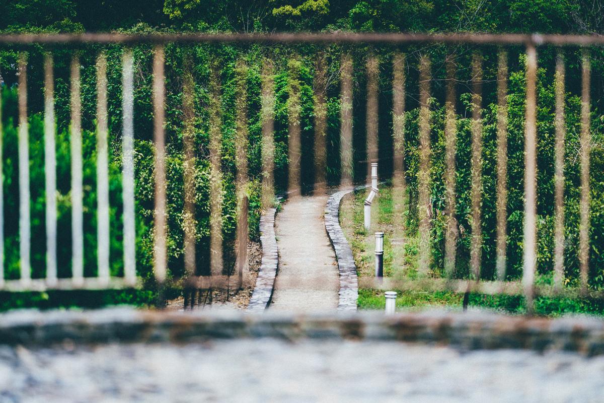 柵ごしの道